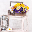 Beautiful flowers in crate with kerosene lamp on ladder on light background — Stock Photo #47964657
