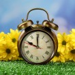 Alarm clock on green grass, on nature background — Stock Photo #47966631