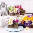 Beautiful flowers in crates with kerosene lamp on wooden stand on light background — Stock Photo #47966753