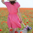 Beautiful young woman holding wicker basket in poppy field — Stock Photo