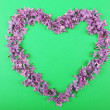 Beautiful lilac flowers in shape of heart on green background — Stock Photo #47967435