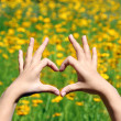 Young girl holding hands in heart shape framing on yellow flowers background — Stock Photo #47967819