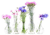 Beautiful summer flowers in vases, isolated on white — Stock Photo