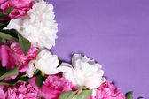 Beautiful pink and white peonies on color  fabric background — Stock Photo