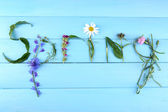 Inscription spring from leaves and flowers on wooden background — Stock Photo
