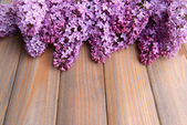 Beautiful lilac flowers on wooden background — Stockfoto