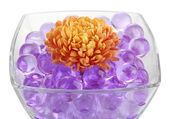 Beautiful flower in vase with hydrogel isolated on white — Stock Photo