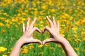 Chica joven con las manos en enmarcar de forma de corazón sobre fondo de flores amarillas — Foto de Stock