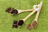 Assortment of dry tea in wooden spoons on green background — Stock Photo