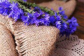 Fresh cornflower wreath on sackcloth background — Stock Photo
