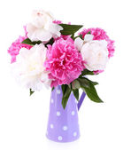 Beautiful pink and white peonies in vase, isolated on white — Stock Photo