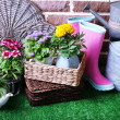 Flowers in decorative pots and garden tools on green grass, on bricks background — Stock Photo #48029945