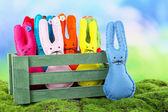 Drôle lapins de Pâques à la main dans la caisse en bois, sur l'herbe verte — Photo