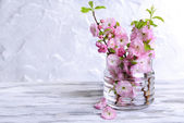 Beautiful fruit blossom in jar on table on grey background — Stock Photo