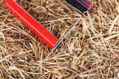 Magnet and needle on hay background — Stock Photo