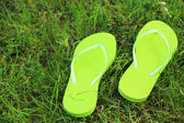 Bright flip-flops on green grass  — Stock Photo