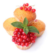Tasty muffins with red currant isolated on white — Stock Photo