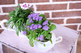 Flowers in  decorative pots on wooden ladder, on bricks background — Stok fotoğraf