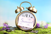 Summertime. Old clock on moss — Stock Photo