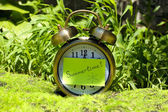 Summertime. Old clock on grass — Stock Photo