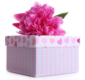 Beautiful peony flower and gift box, isolated on white — Stock Photo