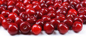 Sweet cherries close up — Stockfoto
