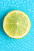 Slice of lime with drop on blue background — Stock Photo