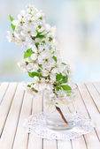 Beautiful fruit blossom in glass on table on light background — Foto Stock