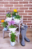 Flowers in  decorative pots on wooden ladder, on bricks background — Stockfoto