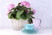 Blooming hydrangea and utensils on table on grey wall background — Stock Photo