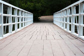 Small bridge in green park — Stock Photo