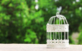 Empty white vintage birdcage  outdoors — Stok fotoğraf