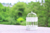 Empty white vintage birdcage  outdoors — Stock Photo
