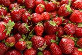 Ripe sweet strawberries close-up — Stok fotoğraf