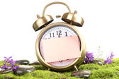 Summertime. Old clock on moss isolated on white — 图库照片