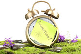 Summertime. Old clock on moss isolated on white — Stock Photo
