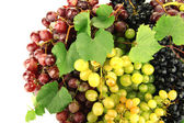 Assortment of ripe sweet grapes — Stock Photo