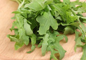 Fresh rucola salad — Stock Photo