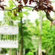 White vintage birdcage hanging on branch — Stock Photo #48605105