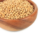 Soy beans in bowl — Stock Photo