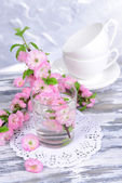 Beautiful fruit blossom in glass on table — Stock Photo