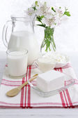 Tasty dairy products — Stock Photo
