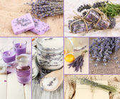 Lavendel collage — Stockfoto