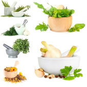Collage of different herbs — Stock Photo