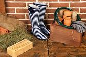 Instrumenten van tuinman — Stockfoto