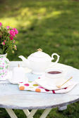Teapot and cup on table, close-up, in garden — Stock Photo