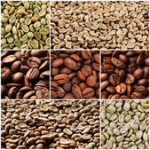 Collage of different coffee beans — Stock Photo