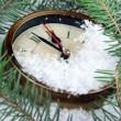 Clock and fir branches under snow — Stock Photo #48898597
