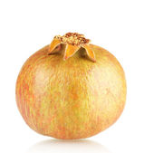 Unripe pomegranate — Stock Photo