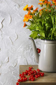 Beautiful flowers in home interior — Stock Photo